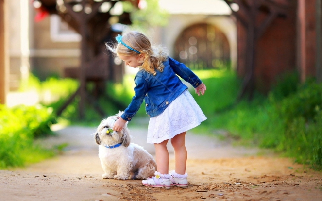 6977111-cute-little-girl-play-white-dog